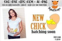 Easter Maternity New Chick Hatching SVG Cut File Product Image 1