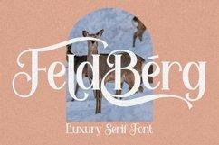 Feldberg - Elegant Luxury Serif Font Product Image 1
