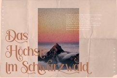 Feldberg - Elegant Luxury Serif Font Product Image 5
