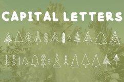 winter font bundle