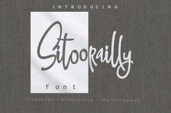 4 in 1 Font bundle Vol 02 Product Image 6