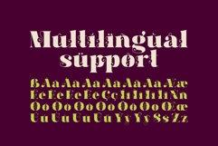 Hallie - Bold Classic Font Product Image 4
