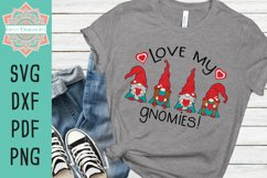 Love My Gnomies Valentine Layered SVG Cut File Product Image 2