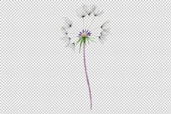 Bouquet rainbow dandelion watercolor png Product Image 7