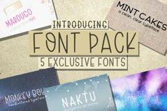 Font Bundle 5 Exclusive Fonts!  Product Image 1