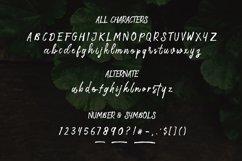 Storytella Script Product Image 3