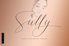 Sully Font Script Product Image 1