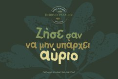 Herbs in Paradise brush font Product Image 5