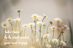 Tuesday Daisy - a beauty script font Product Image 2