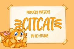 Citcat Product Image 1
