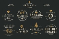 Melvis - Vintage Font Family Extras Product Image 2