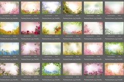 40 Painted Flowers Photo Overlays Product Image 4