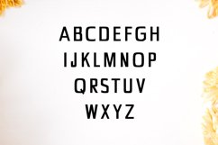 Chrys Sans Serif Typeface Product Image 2