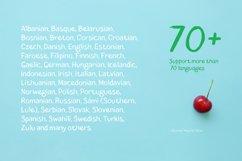 Blushes Regular & Blushes Italic Product Image 3
