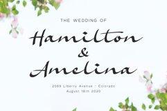 Amelina Font Duo Product Image 2