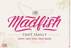 Madfish Font Family  Extras Product Image 1