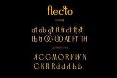 Flecto Clean Sans Serif Product Image 3