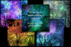 Forest of Stars Backgrounds - 12 Image Textures Set Product Image 2