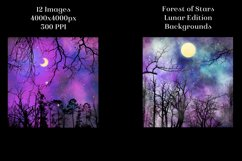 Lunar Edition - Forest of Stars Backgrounds - 12 Images Product Image 4