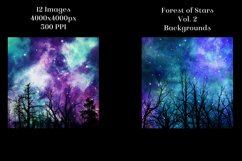 Forest of Stars Vol. 2 Backgrounds - 12 Image Textures Set Product Image 4