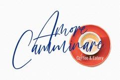 Frank Martin Signature Brush Font Product Image 5