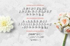 Web Font Fregate Product Image 4