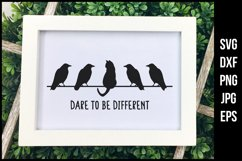 funny cat SVG saying Dare to be different