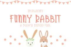 Funny Rabbit Product Image 1