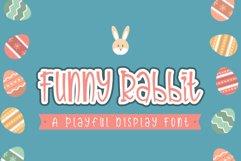 Funny Rabbit Product Image 6