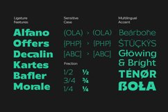 Galpike Sans - Variable Font Product Image 4