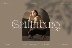 Gatlinburg - Modern Serif Font Product Image 1
