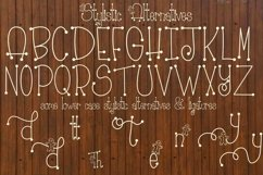 Gingerbread Font | Christmas Font | Multilingual | Glyphs Product Image 5