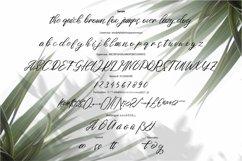 Sotune - Signature Script Font Product Image 5