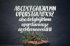 Web Font Gourmette - Handlettering Font Product Image 6