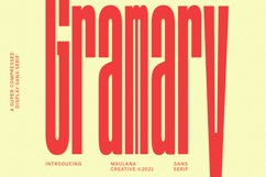 Gramary Compressed Sans Font Product Image 1