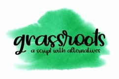 Web Font Grassroots - A Hand Lettered Script Product Image 1