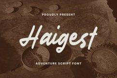 Web Font Haigest Font Product Image 1