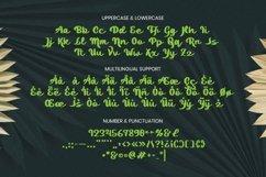 Web Font Hanako Font Product Image 5