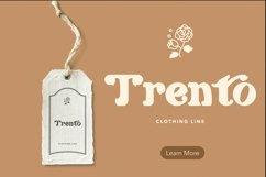 Web Font Hanqing - Elegant & Retro Font Product Image 2