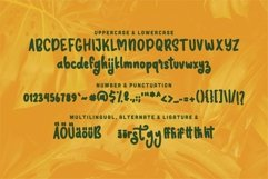 Web Font Hector - Bold & Fun Font Product Image 6