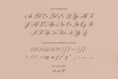Hello Bride Fonts | Wedding Fonts Product Image 5