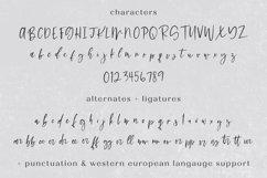 Hello Dear Script Product Image 4
