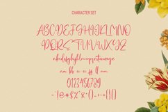 Hellostars Beauty Script Font Product Image 3