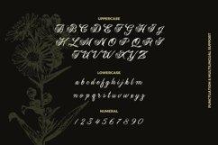 Web Font Heristage Font Product Image 3