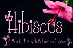 Hibiscus Font   A Summer Beach Font   Flower Font   Tropical Product Image 1