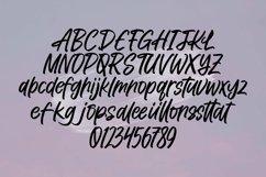 Web Font Holdings - Brush Lettering Font Product Image 4