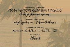 Web Font Holiday - Handwritten Script Font Product Image 5