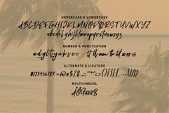 Holiday - Handwritten Script Font Product Image 6