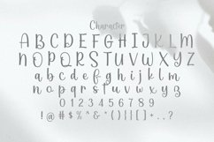 Web Font Home Product Image 2