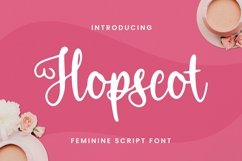 Web Font Hopscot Font Product Image 1